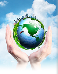 Environment|EHS Policy|Boviet Solar Technology Co., Ltd.